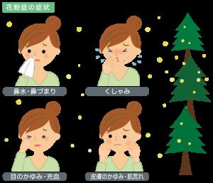 kafunsyoujyou