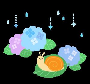 rain__hydrange_snails_1507