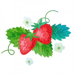 strawberry_natural2